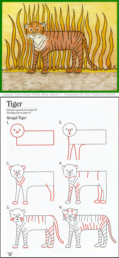 Draw Write Now, Book 7, Tiger Drawing Lesson for Children