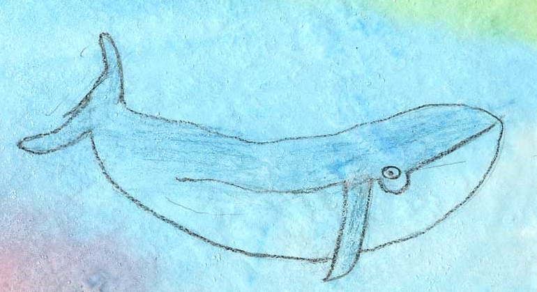 Whale drawing by Keith, age 12. Lesson from Draw-Write-Now, Book 4 - drawyourworld.com