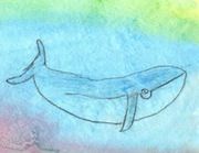 Draw Write Now, Whale Lesson