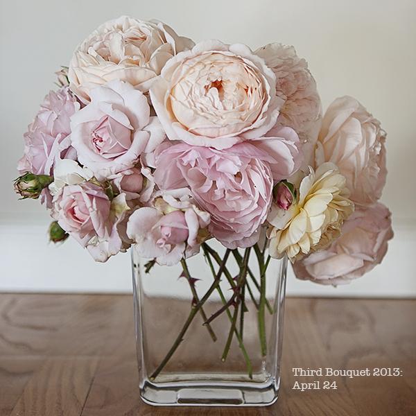 Julie_Prichard_Roses.jpg