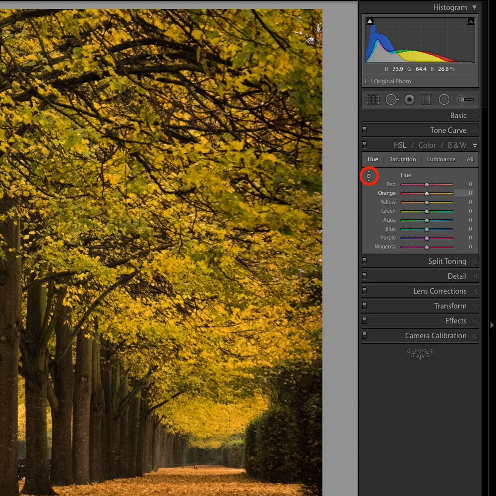 Adobe Lightroom TAT tool for Hue