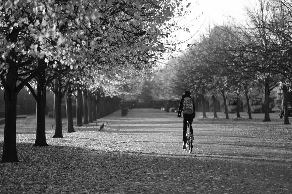 Regents Park Cyclist - Fuji X-T2 56mm @ f1.2