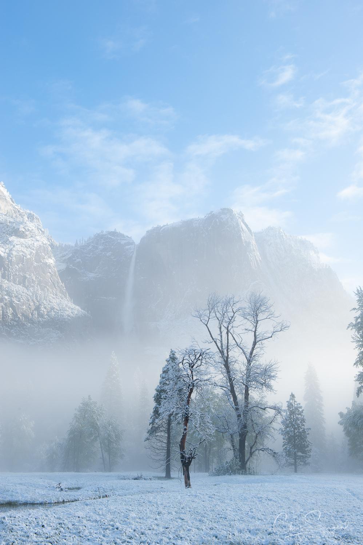 Nikon D3 - Yosemite Landscape - Un-Edited RAW