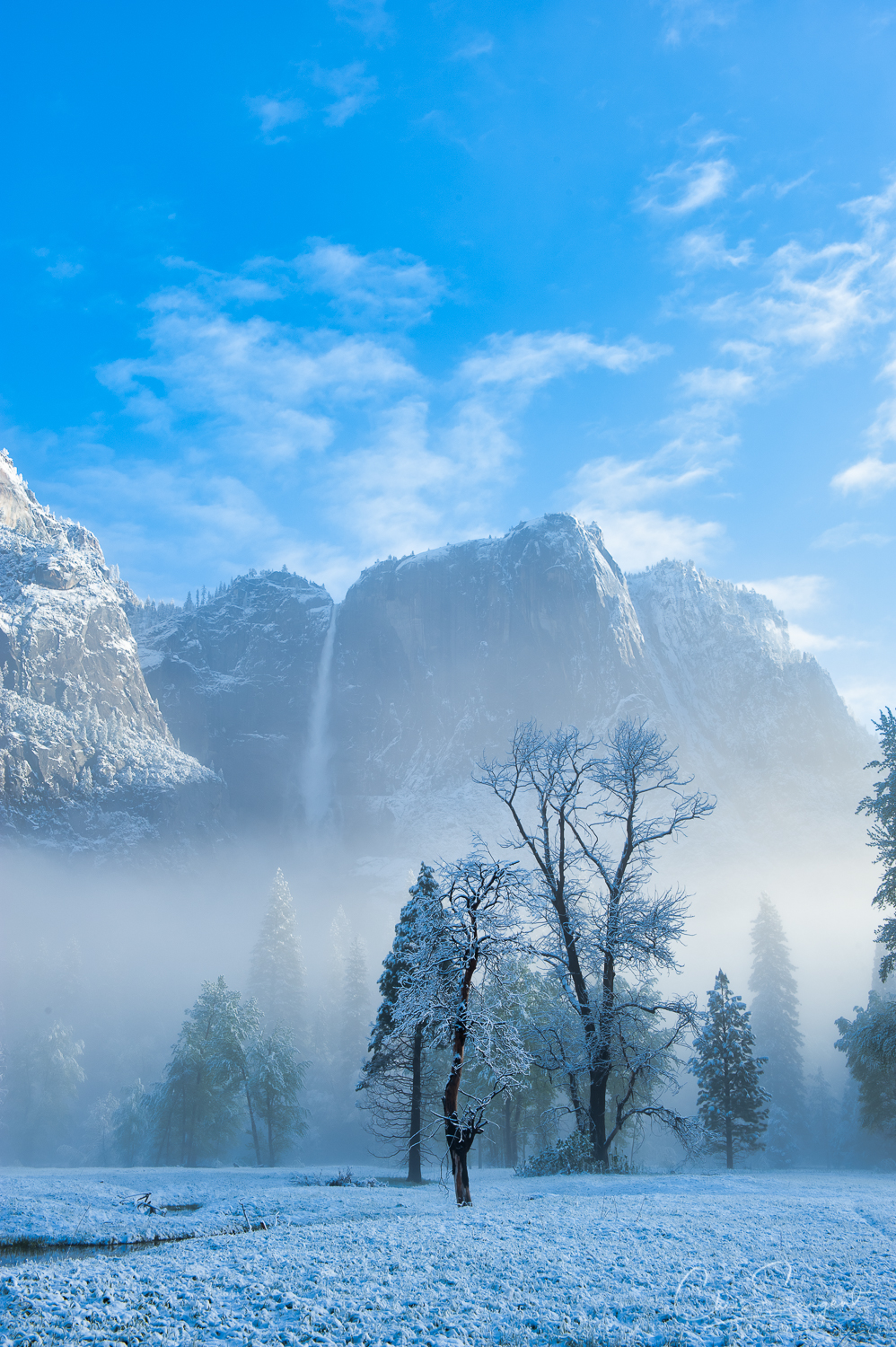 Nikon D3 - Yosemite Landscape - Edited in Photolemur 3