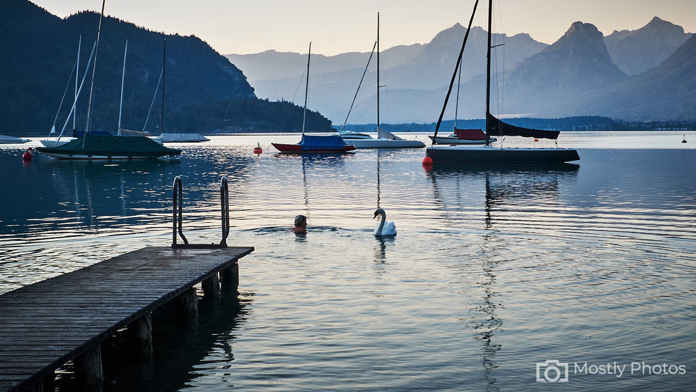Swan and Swimmer Lake Wolfgang, Austria - Fuji X-T2