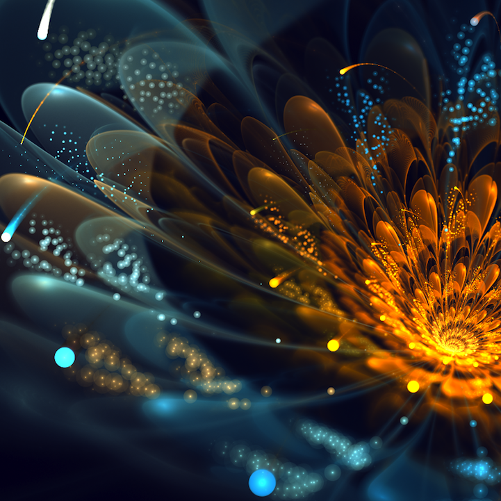 fractalflowers06.png