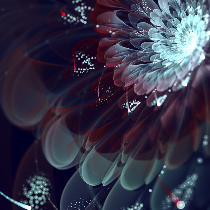 fractalflowers02.png