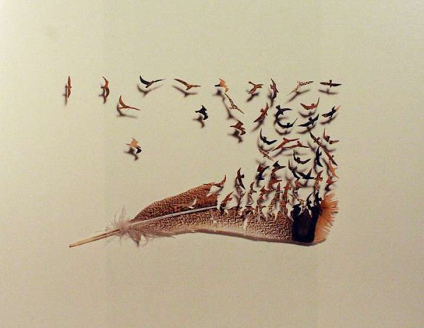 feather-art-chris-maynard2-600x465.jpg