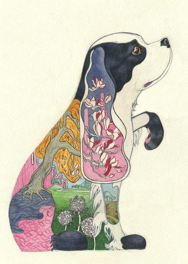 animal-paintings-watercolors-Daniel-Mackie-2.jpg