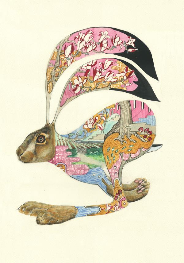 animal-paintings-watercolors-Daniel-Mackie-3.jpg