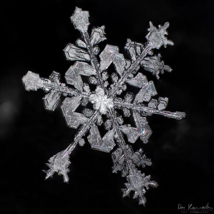 snowflake02.jpg