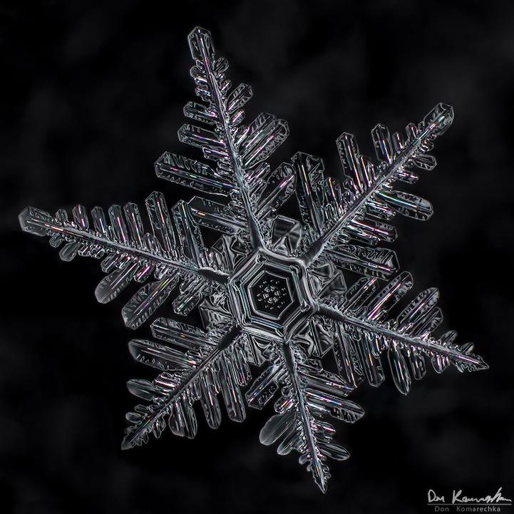 snowflake07.jpg
