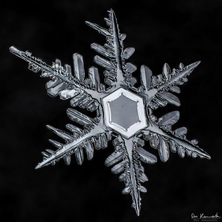 snowflake06.jpg
