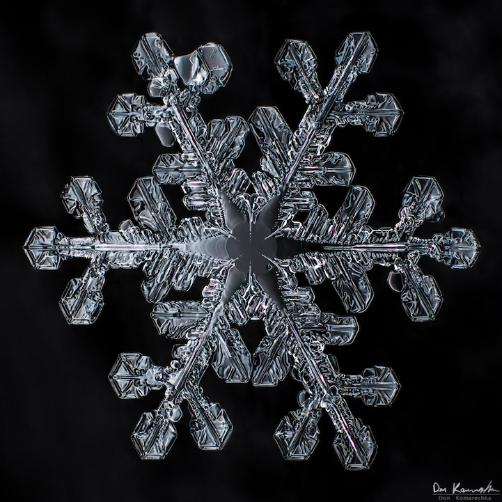 snowflake011.jpg