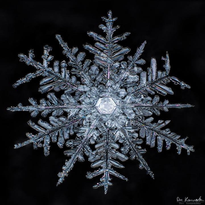 snowflake10.jpg