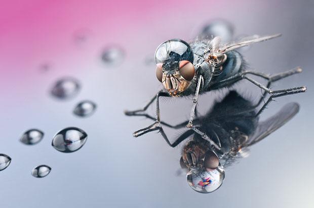 waterdrop.jpg