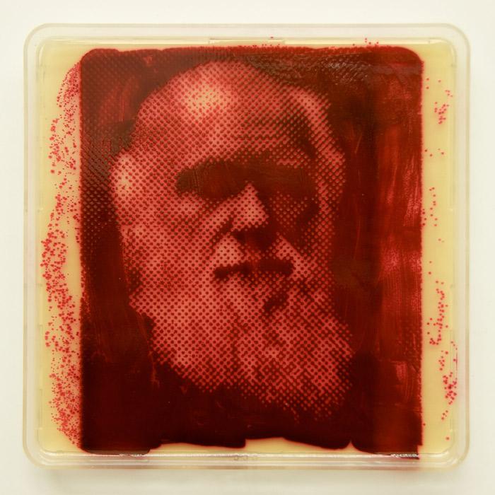 darwin-portrait-bacteria-art.jpg