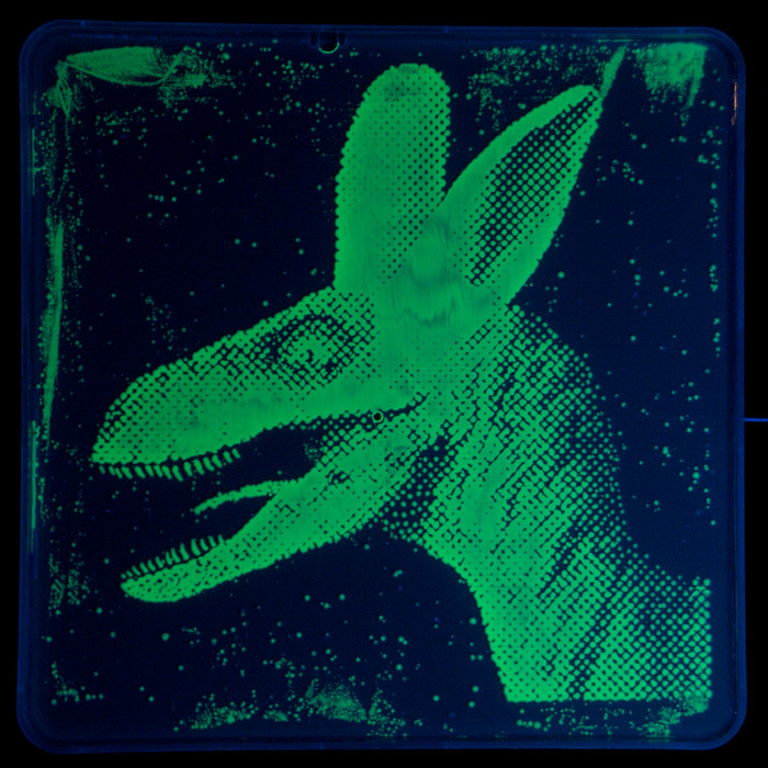 albasaurus-the-worlds-first-dayglo-veleocirabbit.jpg