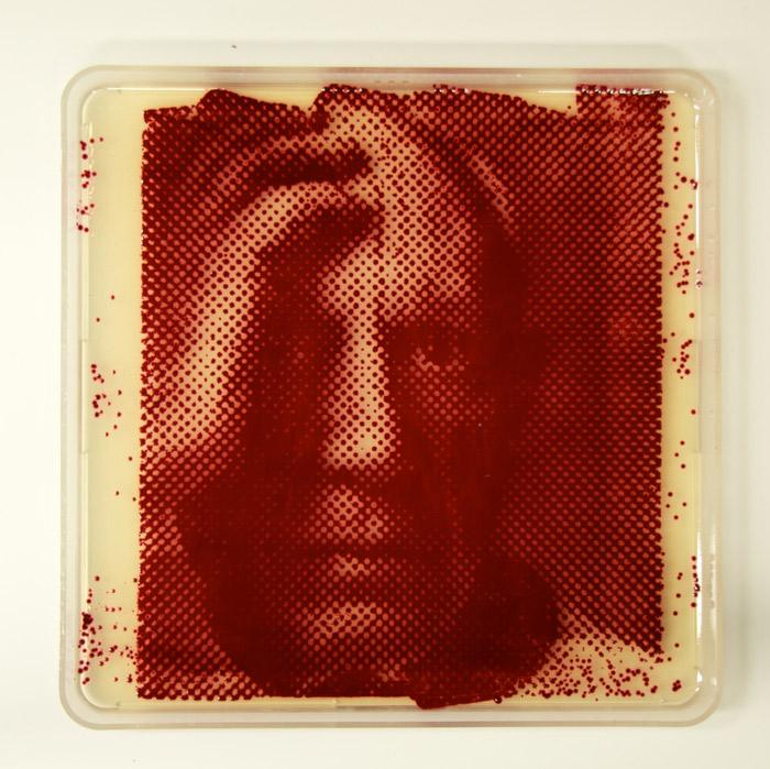 picasso-portrait-bacteria-art.jpg