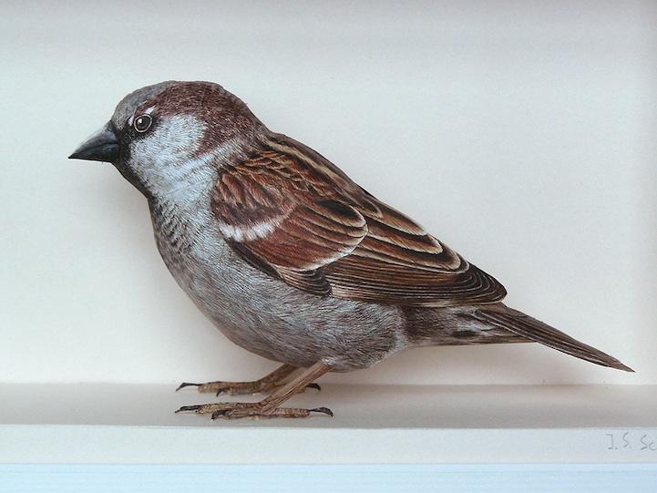 papercraftbirds05.jpg