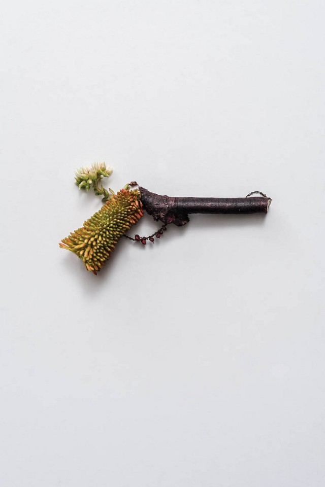 Weapons-made-of-Plants5-640x960.jpg