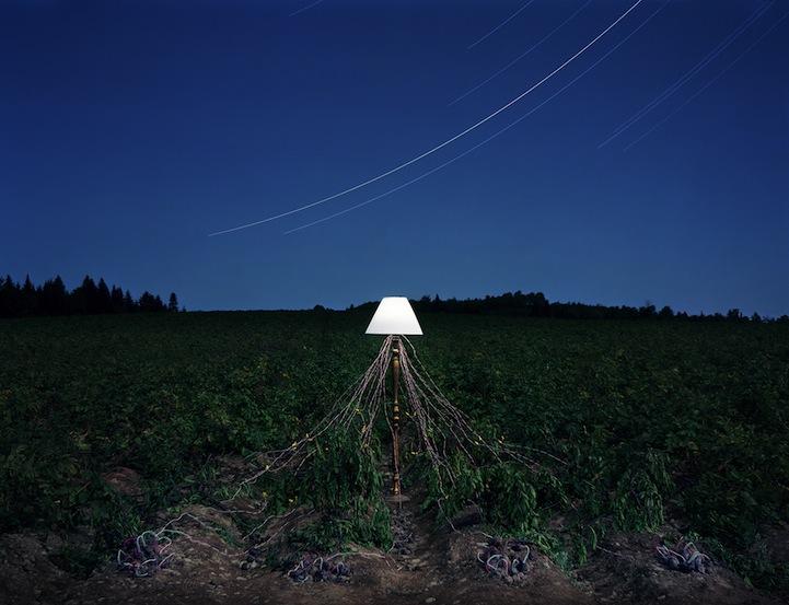عکس3:اخبار علم فناوری آموزش در علمها-تولید برق از میوه و خلق آثار هنری