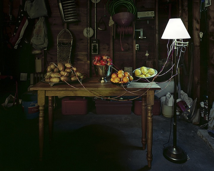 عکس4:اخبار علم فناوری آموزش در علمها-تولید برق از میوه و خلق آثار هنری