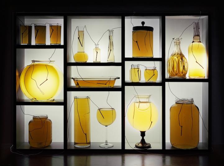 عکس5:اخبار علم فناوری آموزش در علمها-تولید برق از میوه و خلق آثار هنری