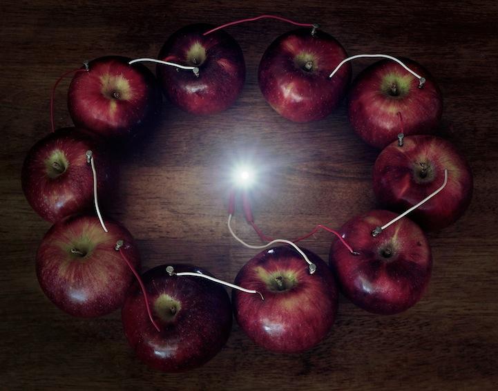 عکس8:اخبار علم فناوری آموزش در علمها-تولید برق از میوه و خلق آثار هنری