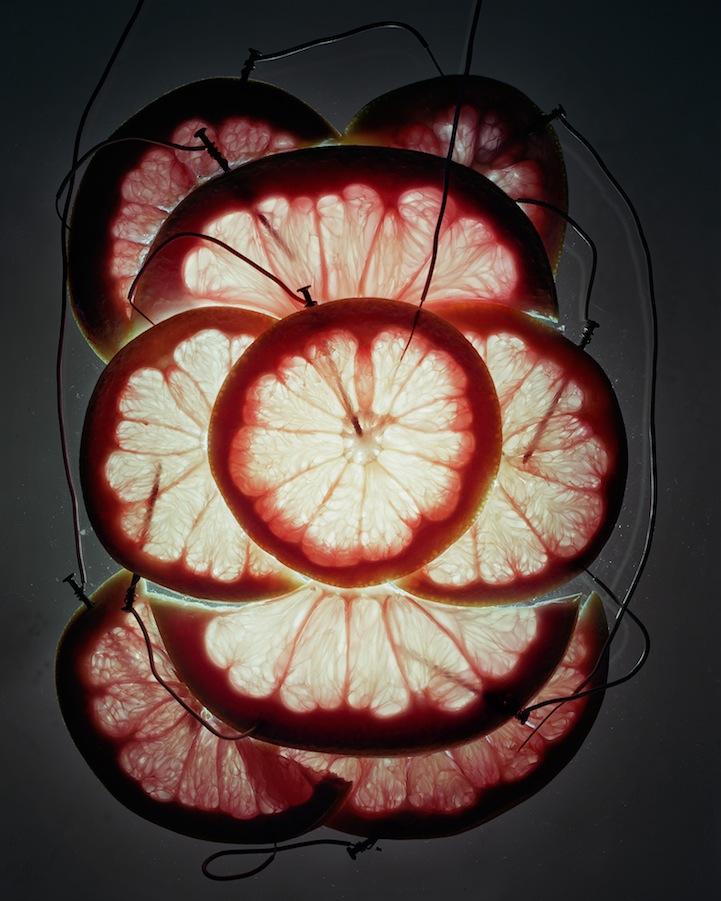 عکس12:اخبار علم فناوری آموزش در علمها-تولید برق از میوه و خلق آثار هنری