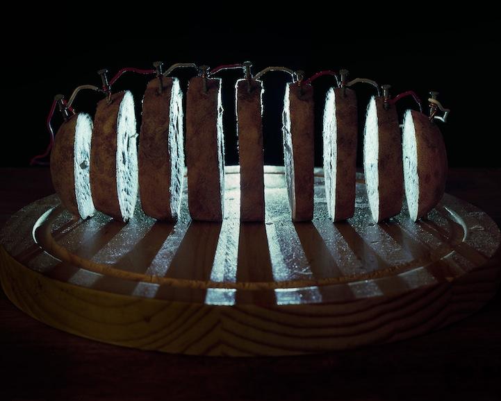 عکس13:اخبار علم فناوری آموزش در علمها-تولید برق از میوه و خلق آثار هنری
