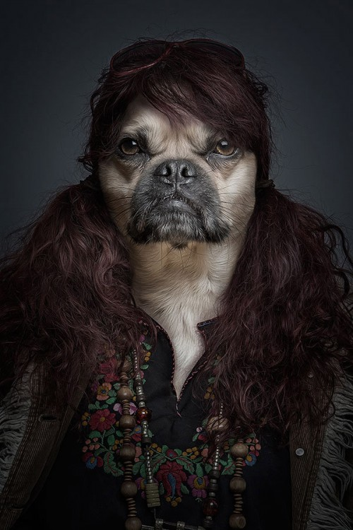 half-human-half-dog-portraits-sebastian-magnani-3-500x750.jpg