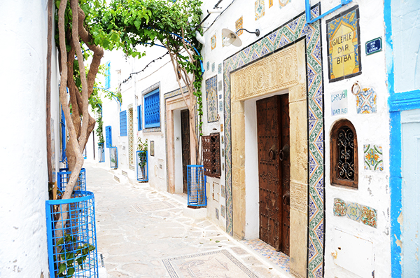 Tunisian-door-designs1.jpg
