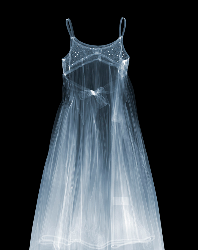 X-Ray-Photography-by-Nick-Veasey-feeldesain-08.png