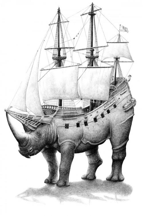 bizarre-animal-3-500x754.jpg
