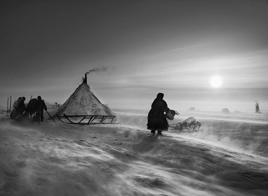 The Nenet people on the Siberian Yamal peninsula (2011)