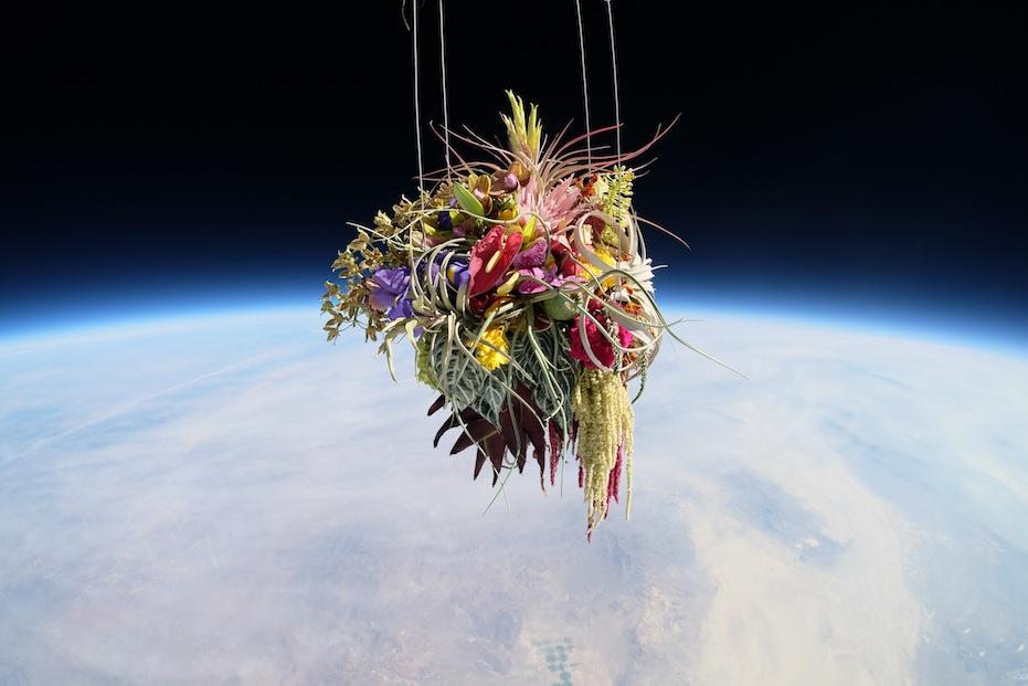makoto-azuma-EXOBIOTANICA-BOTANICAL-SPACE-FLIGHT-6.jpg