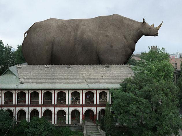 Fat_animals_feeldesain_01.jpg