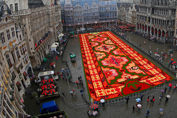 Brussels-Flower-Carpet-2014-1.jpg