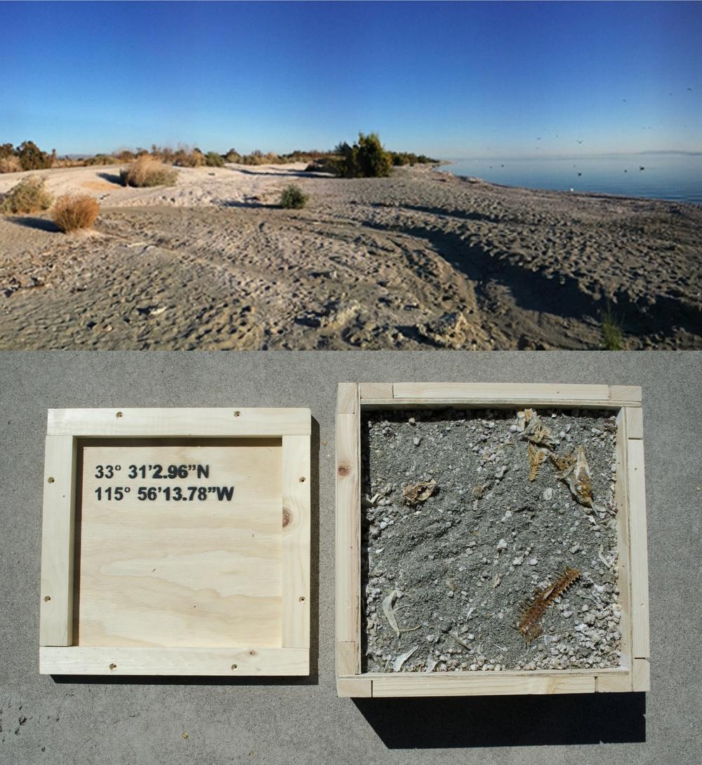 Salton Sea box.jpg