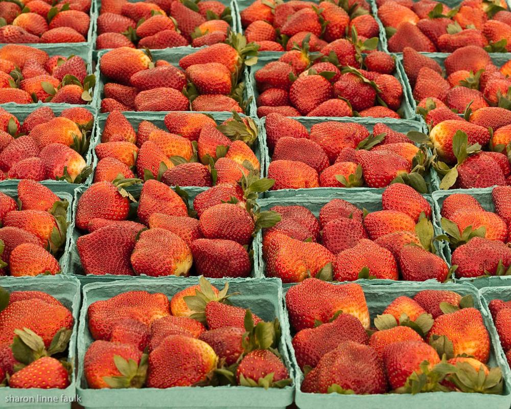 market 030510-79.jpg