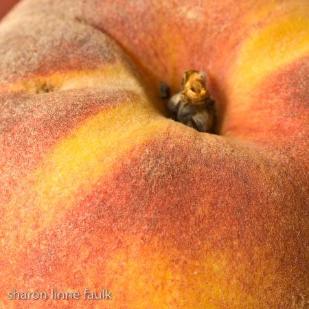 slf peach.jpg