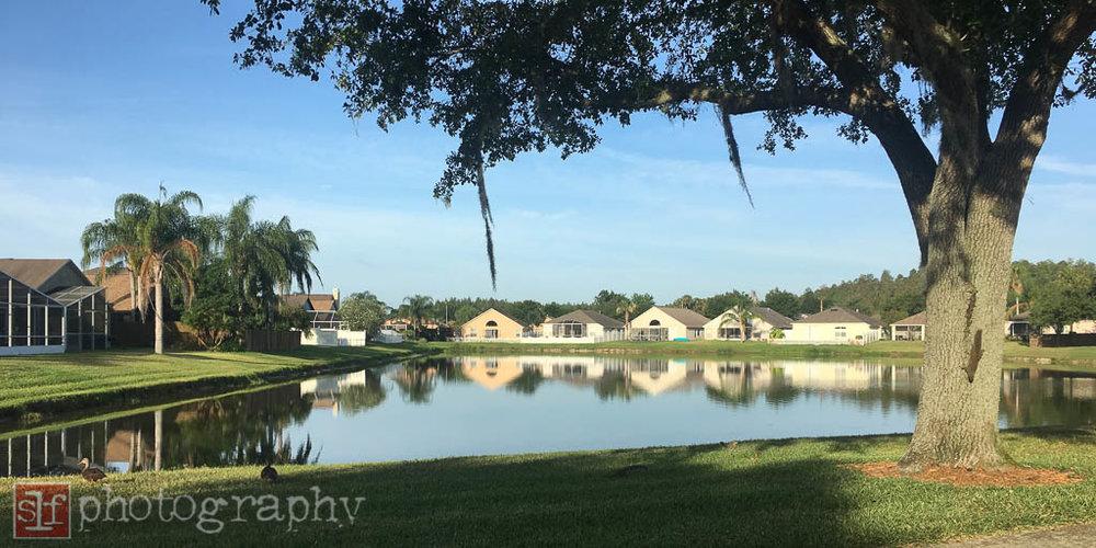 i wish our village had a public pond