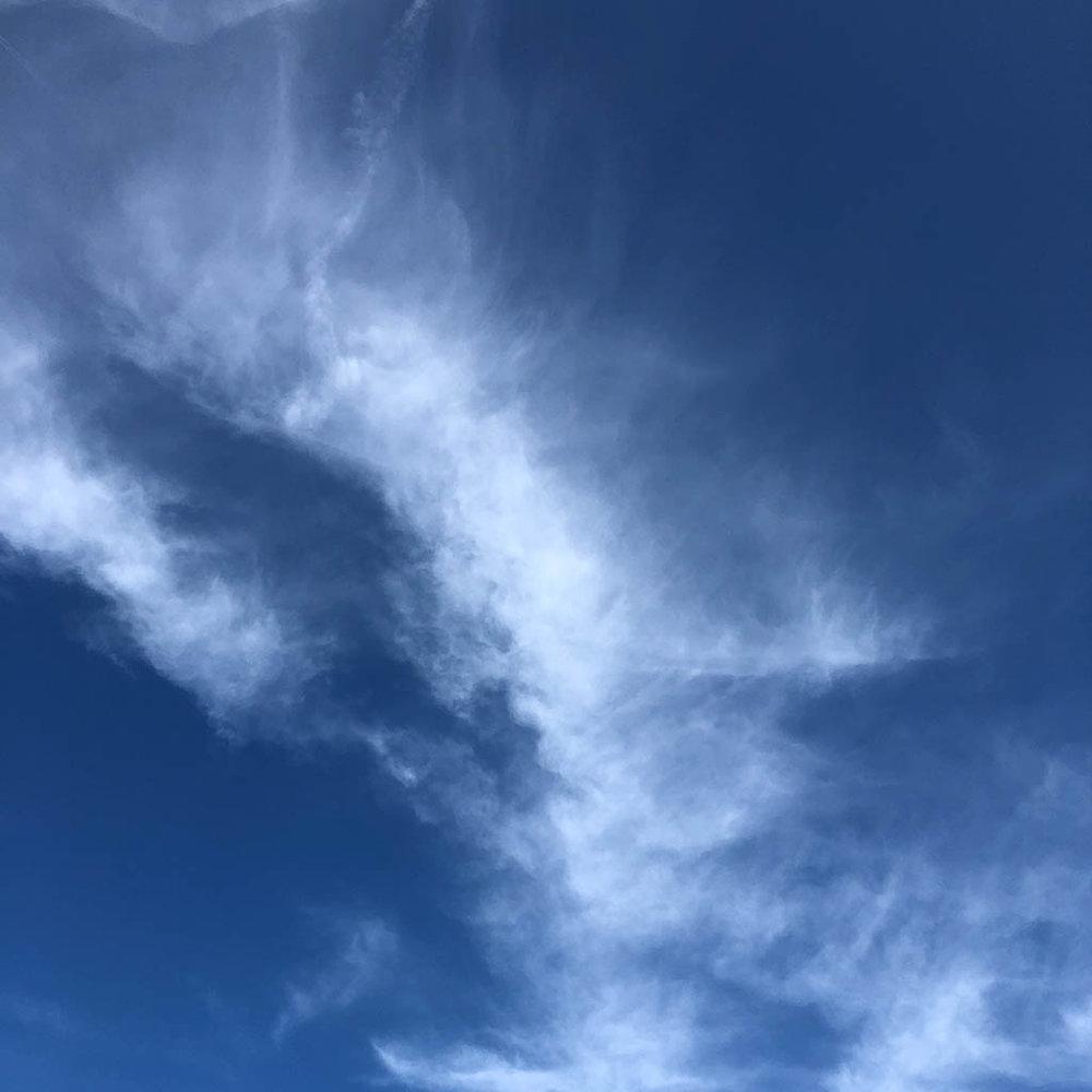 slf-20180311-09.jpg