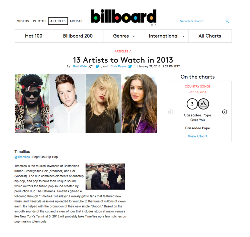13 Artists to Watch in 2013.jpg