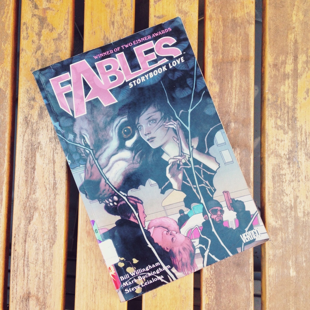I requested the first two volumes of Bill Willingham's Fables from the library (support your local libraries!). I'm liking it so far.