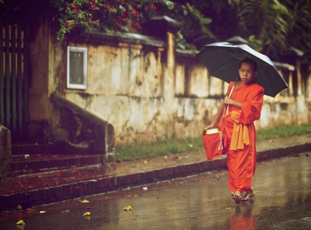 a solo walk in the rain.jpg