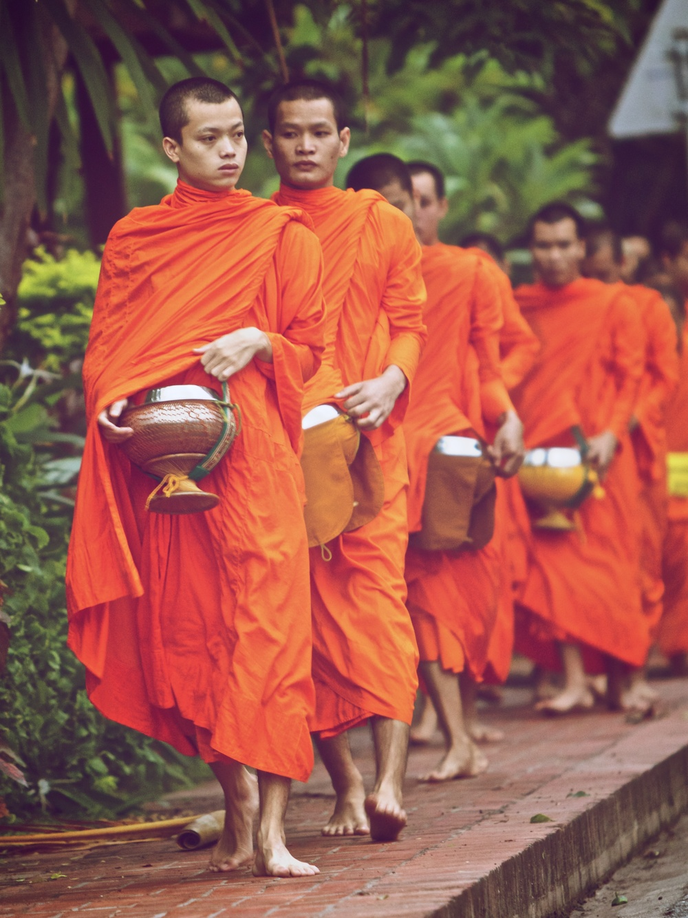 Monks walk to collect rice.jpg
