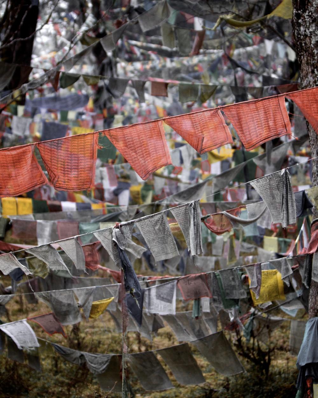 Prayer flages in Punakha.jpg