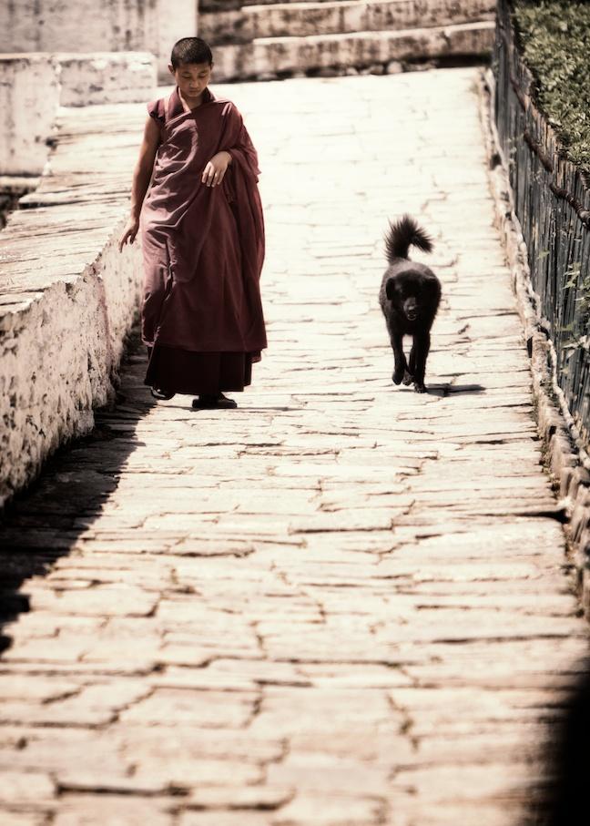 Monk at Trongsa Dzon